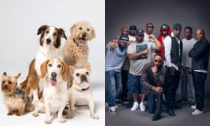 Dog fight … US rap group Wu-Tang Clan are in a trademark fight with a New York dog-walking company.