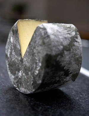 Nettle cheese … Cornish Yarg.