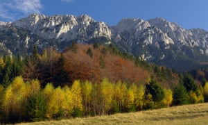 Tour operator Undiscovered Mountains is planting trees in the Southern Carpathian region through its offsetting initiative.
