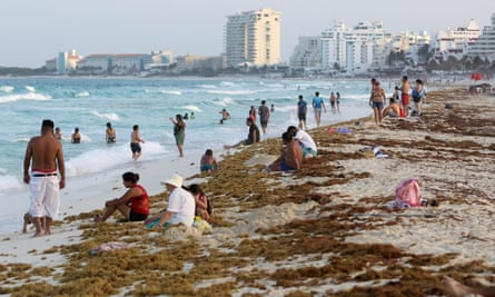 Tourists on a beach covered with seaweed in Cancun, Mexico, on 24 June.
