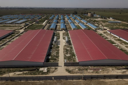 A quarantined pig farm in Hebei, outside Beijing. The ongoing outbreak in China has already wiped out 40% of pigs in the country.