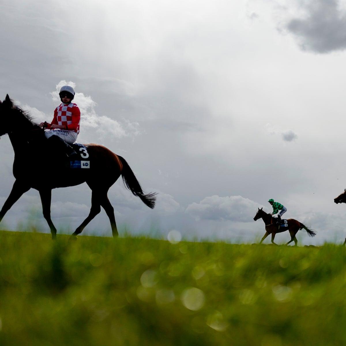 Cambridgeshire handicap betting definition paypal scams csgo betting