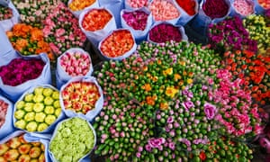Bunches of blooms in The Flower Market, Mong Kok.