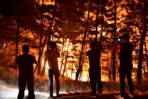 Mersin, Turkey: Flames rage as firefighters tackle a forest blaze.