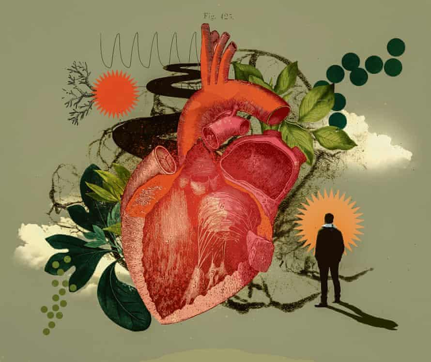 Eleanor Shakespeare illustration