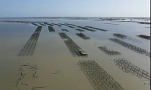 A drone image of the floods over the Ebro Delta in Tarragona, Catalonia, on 23 January after Storm Gloria battered the east coast of Spain.