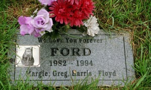Personalised grave stone for cat named Ford in Chicago, America