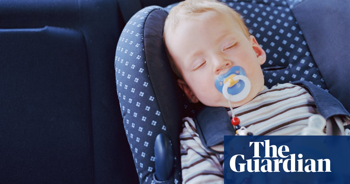 Air Pollution More Harmful To Children In Cars Than Outside Warns  Air Pollution More Harmful To Children In Cars Than Outside Warns Top  Scientist  Environment  The Guardian