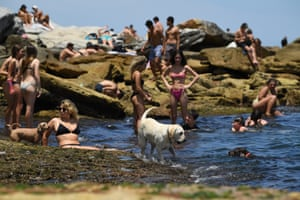 Sydney's dogs were also feeling the heat on Saturday.