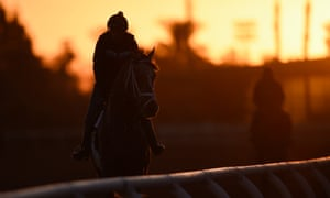 Horses work on the track during sunrise in the build-up to the Breeders' Cup at Santa Anita this weekend.