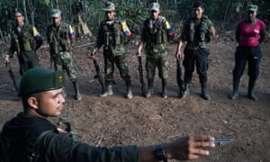 As peace talks between Farc and the Colombian government enter into a final phase, guerrillas inhabit jungle camps and prepare for the transition to civilian life.