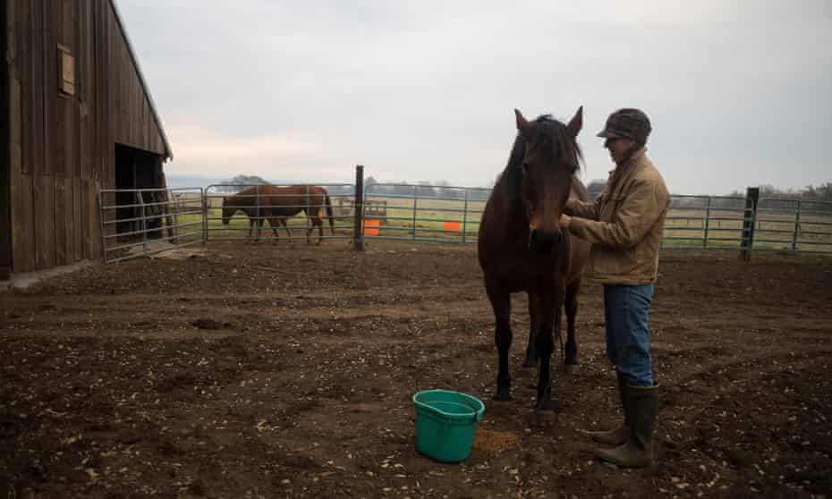 Breanna Owens tends to her horses on her ranch in Los Molinos, Califoria.