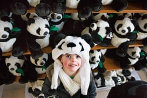 A young panda fan tests out the merchandise