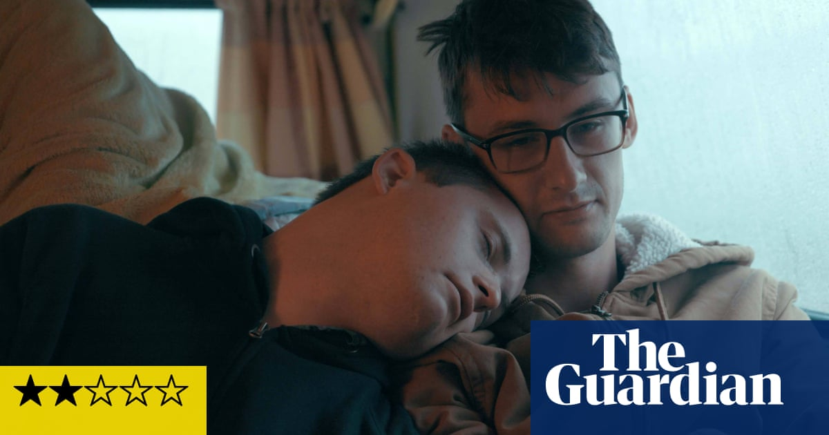 Handsome review – meandering Down's syndrome road trip
