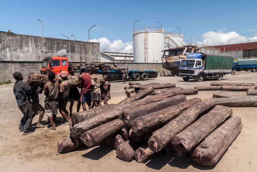 Loading rosewood on to trucks at the port of Toamasina, Madagascar.