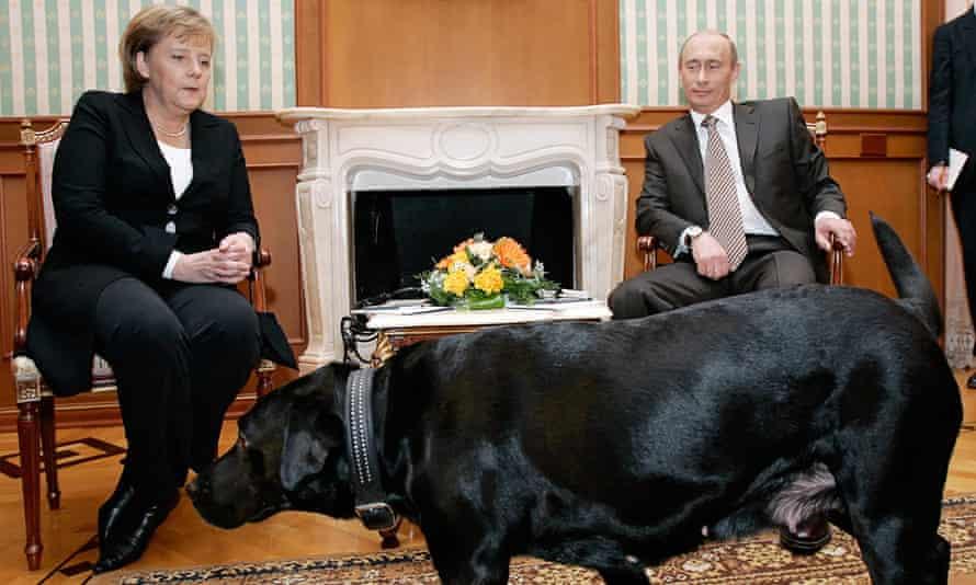 angela merkel with vladimir putin and his dog konni