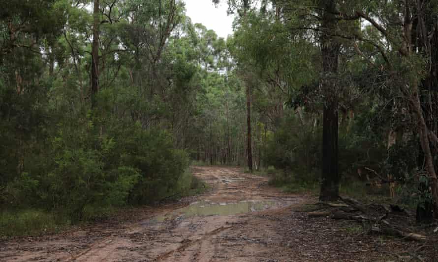 File photo of the Castlereagh Nature Reserve, Berkshire Park, Australia