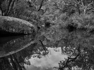 A bush waterhole