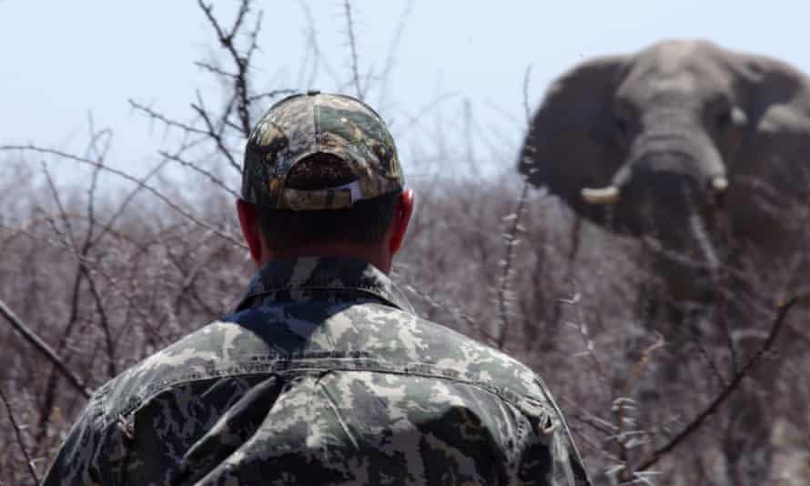 Hunting an elephant in Africa