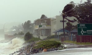 Trees are battered up and down the coast, while rough ocean waves crash into the coast.