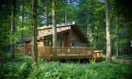 Private retreat: a cabin in the woods, complete with hot tub.