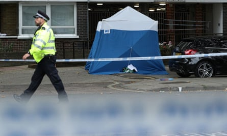 Met launches murder investigation after woman stabbed to