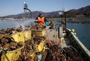 Fujita's oyster boat
