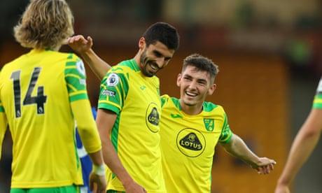 Premier League 2021-22 preview No 15: Norwich City