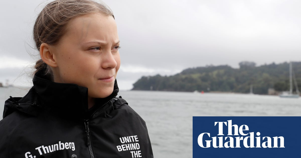'Greta Thunberg effect' driving growth in carbon offsetting - The Guardian