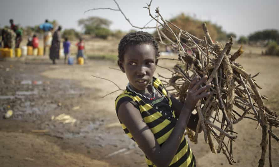 a girl gathers firewood in awerial, south sudan