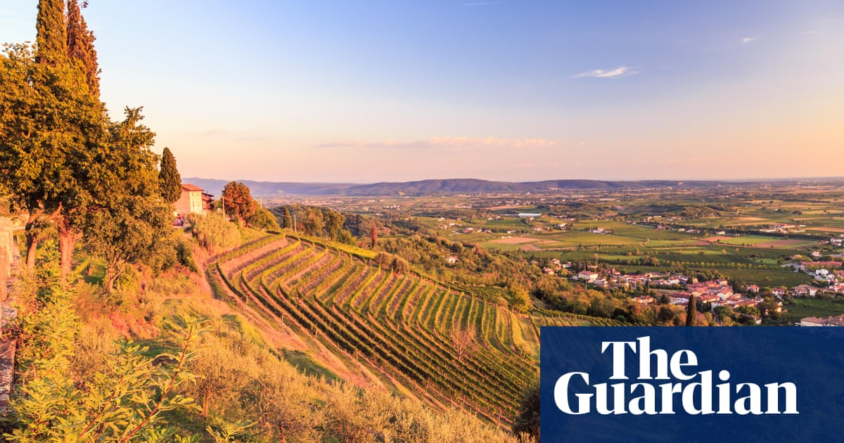 Friuli with frills: a weekend tour of Italy's white wine heartland