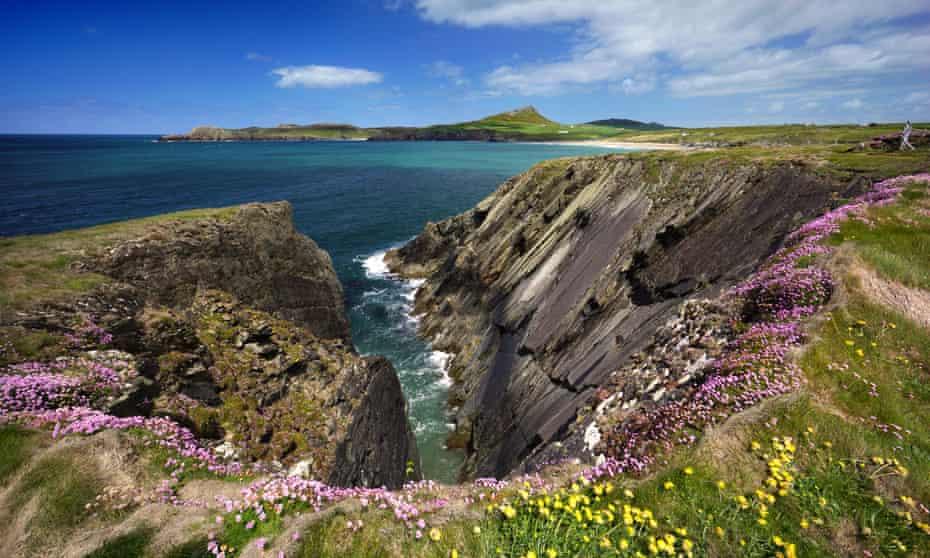 مسیر ساحلی Pembrokeshire در نزدیکی خلیج Whitesands ، سنت دیوید.