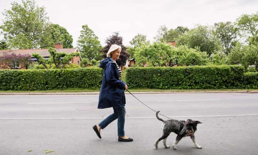 Four legs good … having a dog has health benefits.