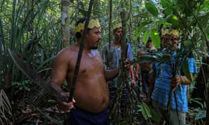 Sateré-Mawé men collect medicinal herbs to treat people showing Covid symptoms, in a rural area west of Manaus, Brazil.
