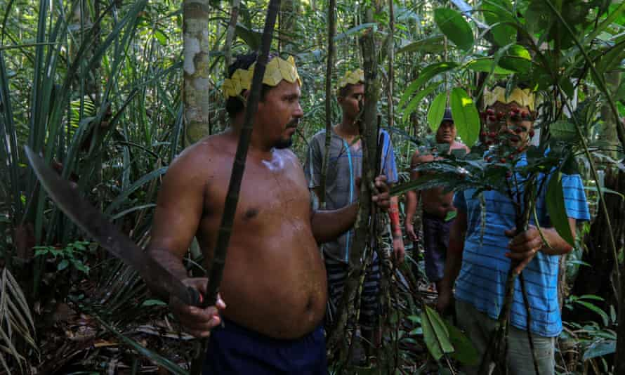 Satere-Mawe men collect medicinal herbs to treat people showing Covid symptoms, in a rural area west of Manaus, Brazil.