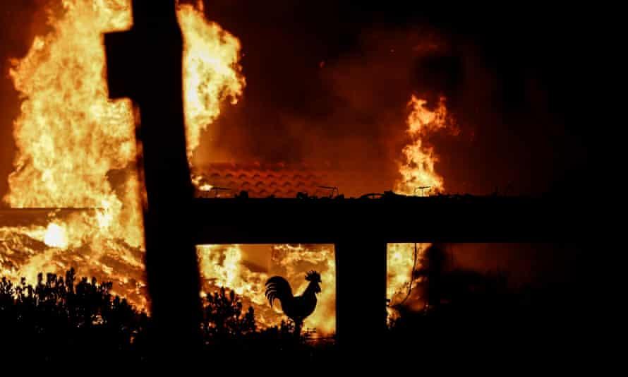 A house burns in a wildfire in Mati.