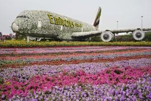 In Marseille, London, Rotterdam or Dubaï hobby farmers cultivate their gardens
