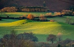 Shaun Davey. Exmoor national park