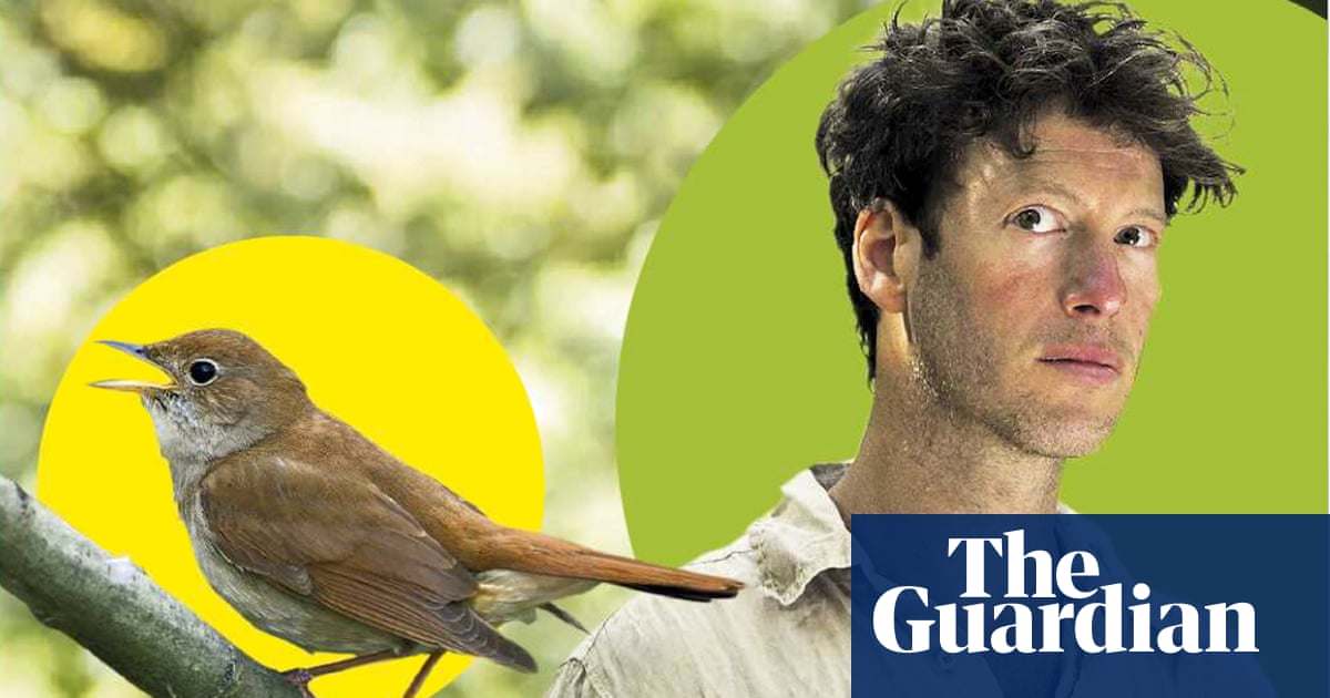 Into the woods: Sam Lee, the singer who duets with nightingales