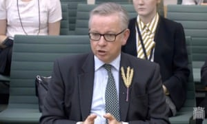 Michael Gove giving evidence to the Commons environment committee.