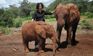 Kahumbu with adult and baby elephant