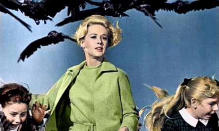 Immaculately groomed and under attack … Tippi Hedren in The Birds.