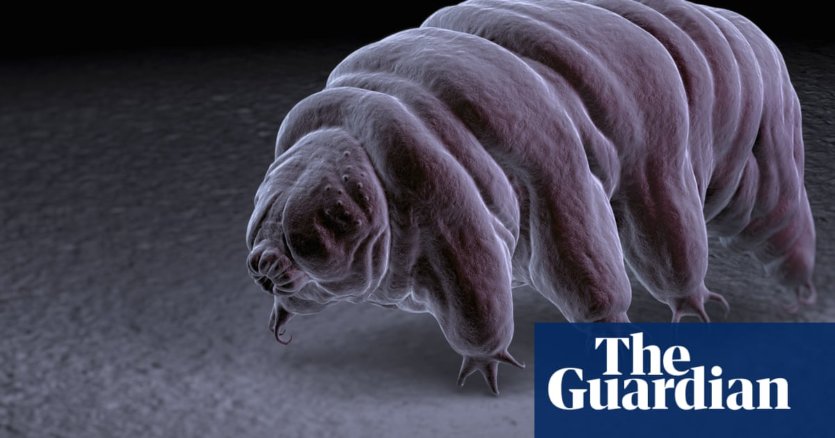 Tardigrades may have survived spacecraft crashing on moon
