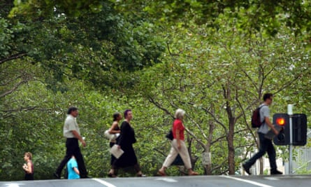 Melbourne's CBD is full of London plane trees, which are erroneously blamed for causing hay fever. The trees will be gradually replaced by species resistant to global heating.