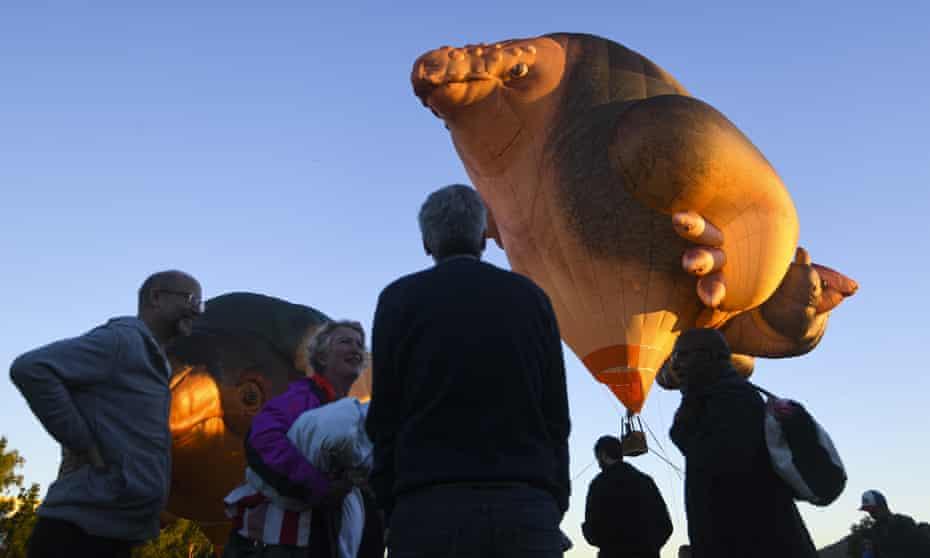 People watch as Skywhalepapa floats in the sky