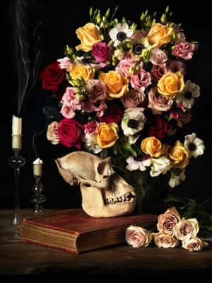 Gorilla skull and flowers