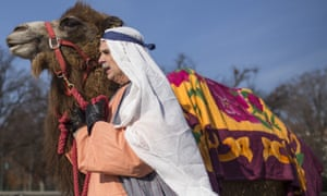 While some say the camels work happily, the animal rights organization PETA have said that camels should not be forced to appear in nativity plays.