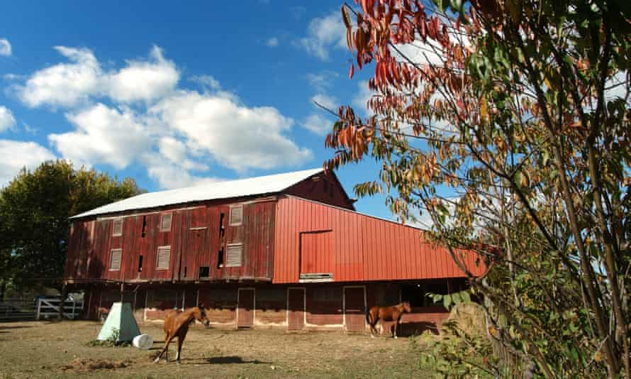Horse stables in rural Canton, Ohio