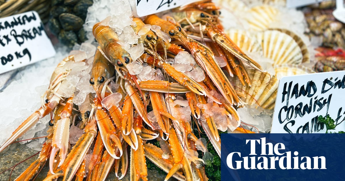 How to turn shellfish shells into stock – recipe