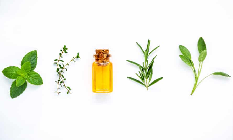 Bottle of essential oil with fresh herbal sage, rosemary, lemon thyme, thyme, green mint and peppermint setup with flat lay on white wooden table